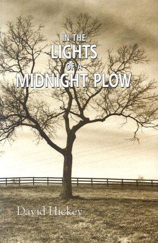 In the Lights of a Midnight Plow by David Hickey